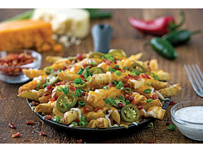 Texas Chili Cheese Fries